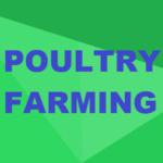 Certificate in Poultry Farming