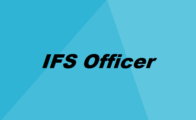 how to become an ifs officer the complete career guide